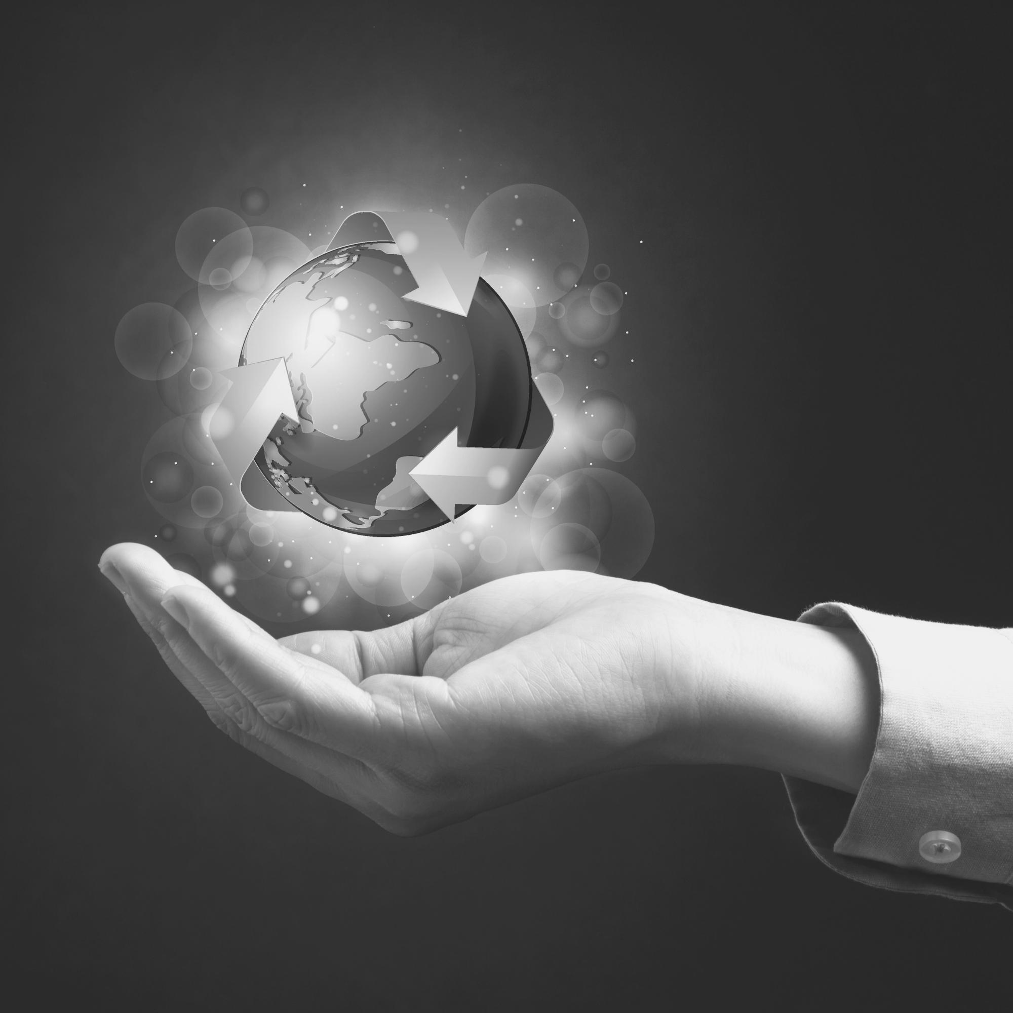 A responsabilidade administrativa ambiental é subjetiva, segundo o STJ